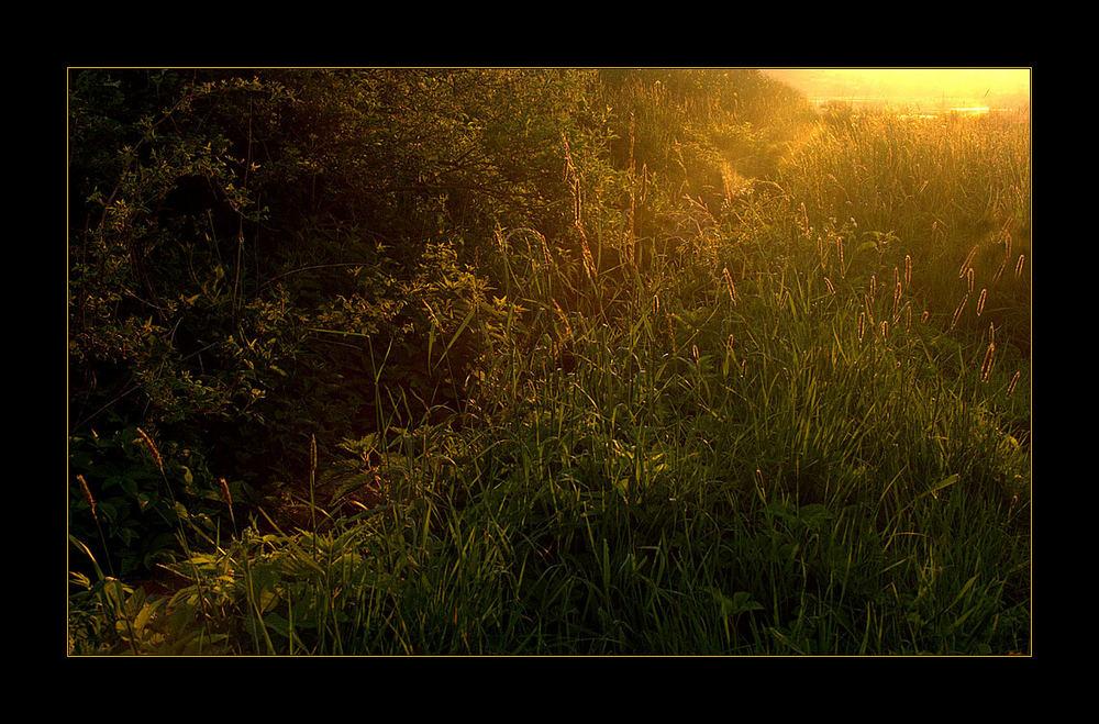 ...aus dem Dunkel... hoch... ans Licht...: Hoffnung...