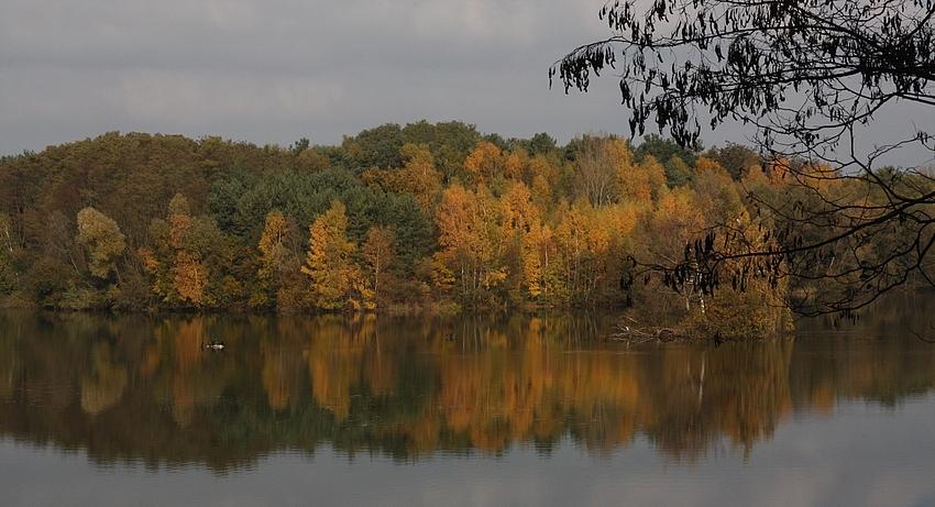 Aus dem Farbkasten der Natur