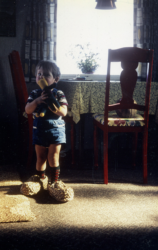 Aus dem Leben eines Rockstars