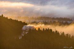Aus dem Nebel ins Licht