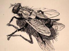 aus dem Skizzenblock des Künstlers Yadegar Asisi´s