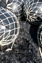 Aus der Fischerei / Dalla pesca / Uit de visserij 1