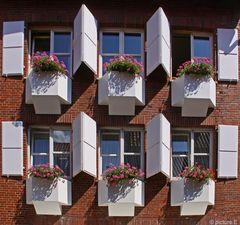 Aus meinem Fensterportfolio - In der kleinen Bergstrasse in Münster-
