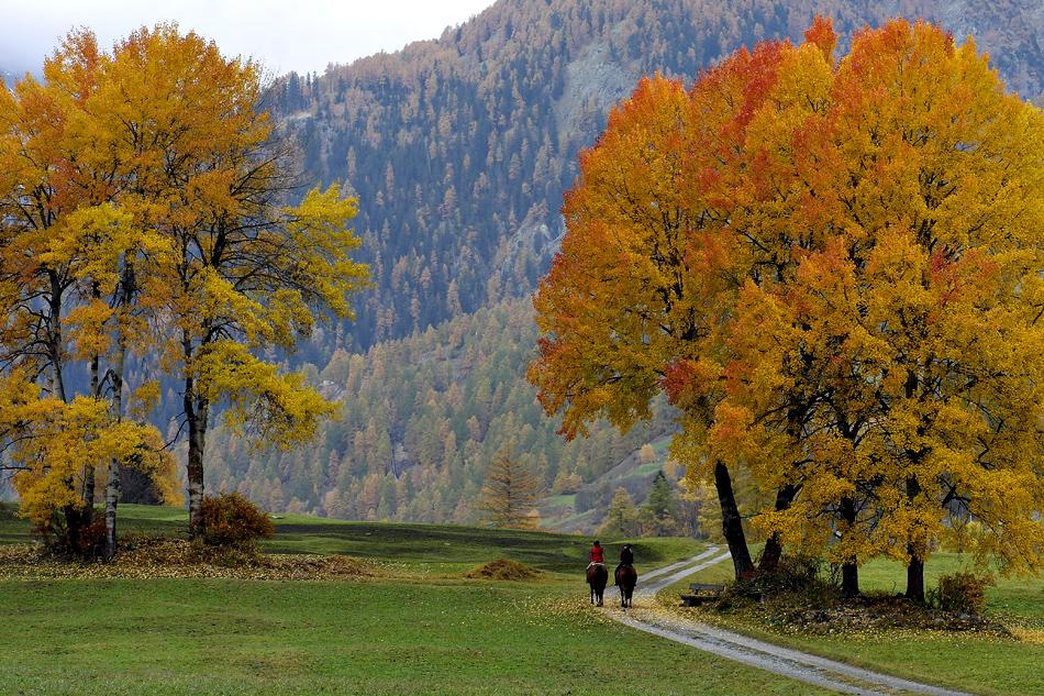 Aus meiner Heimat eine Herbstimpression