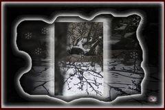 * aus Sicht auf Schnee *
