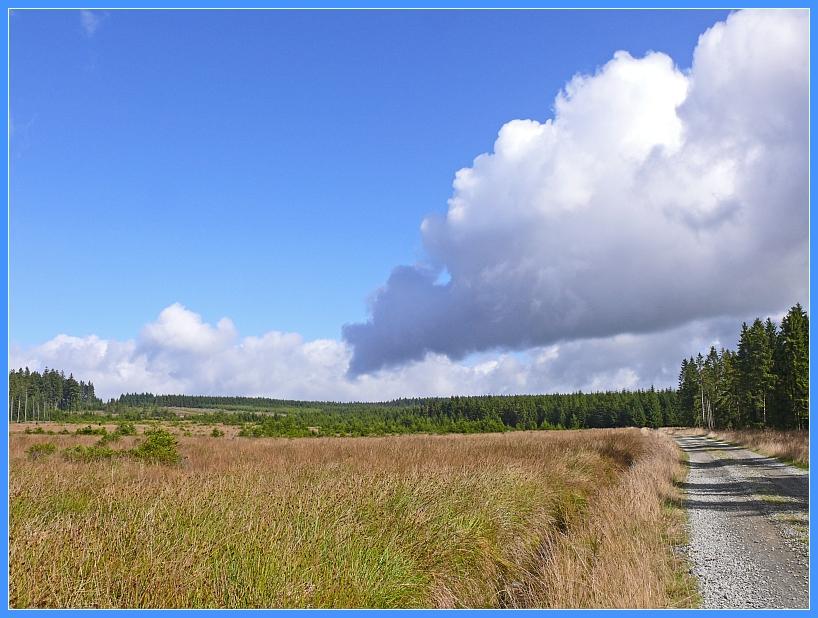 aus tiefhängenden Wolken...