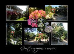 ...aus unserem Sommergarten....