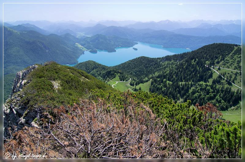 Ausblick vom Herzogstand auf den Walchensee