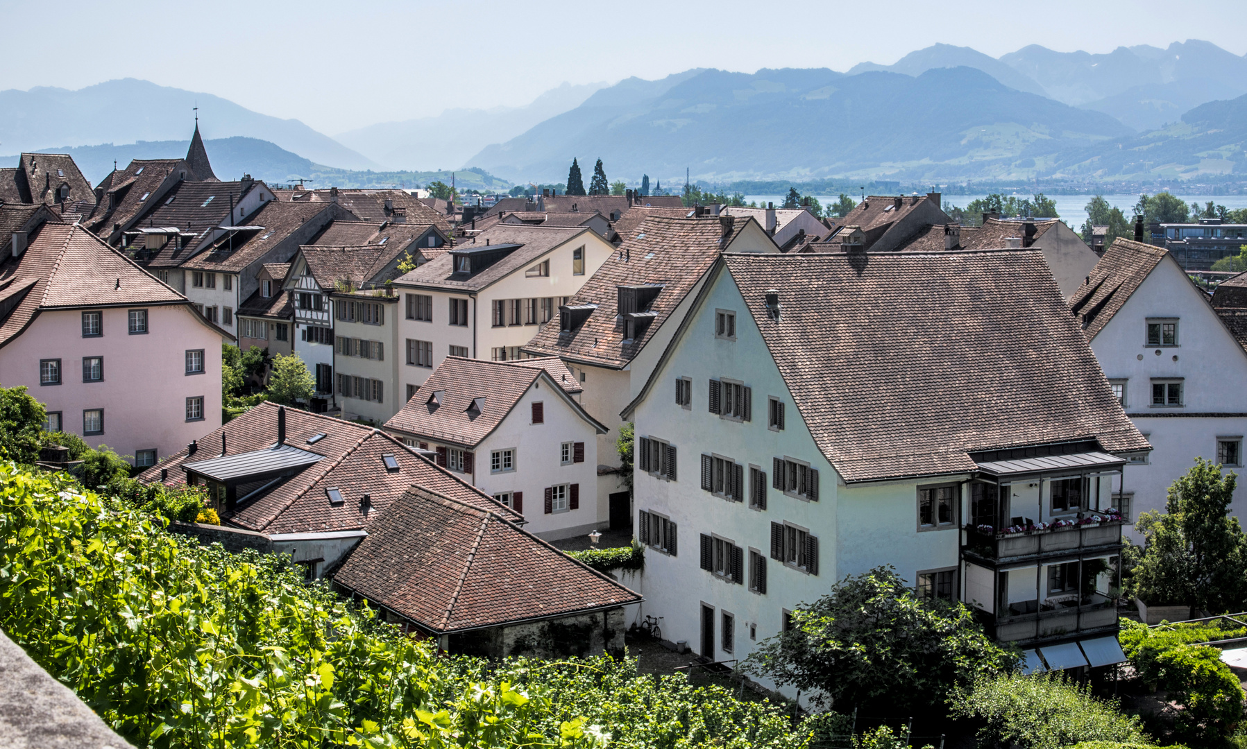 Ausblick vom Schlosshügel Rapperwil