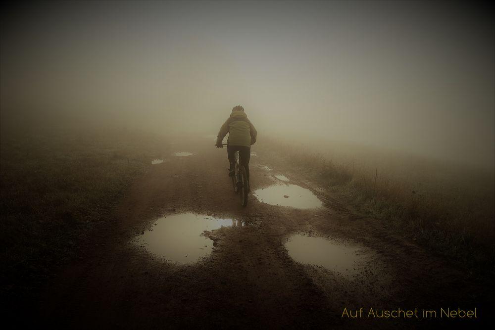 auschet im nebel