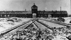 AUSCHWITZ... - 27. Januar 1945