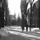 Auschwitz Stammlager (10)