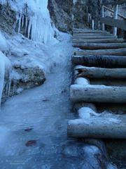 """Ausflug Nach Hinang 8 - Hounds Of Winter"""
