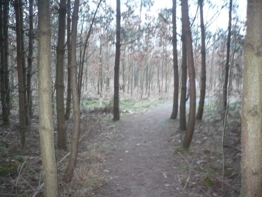 ausgang aus dem labyrinth