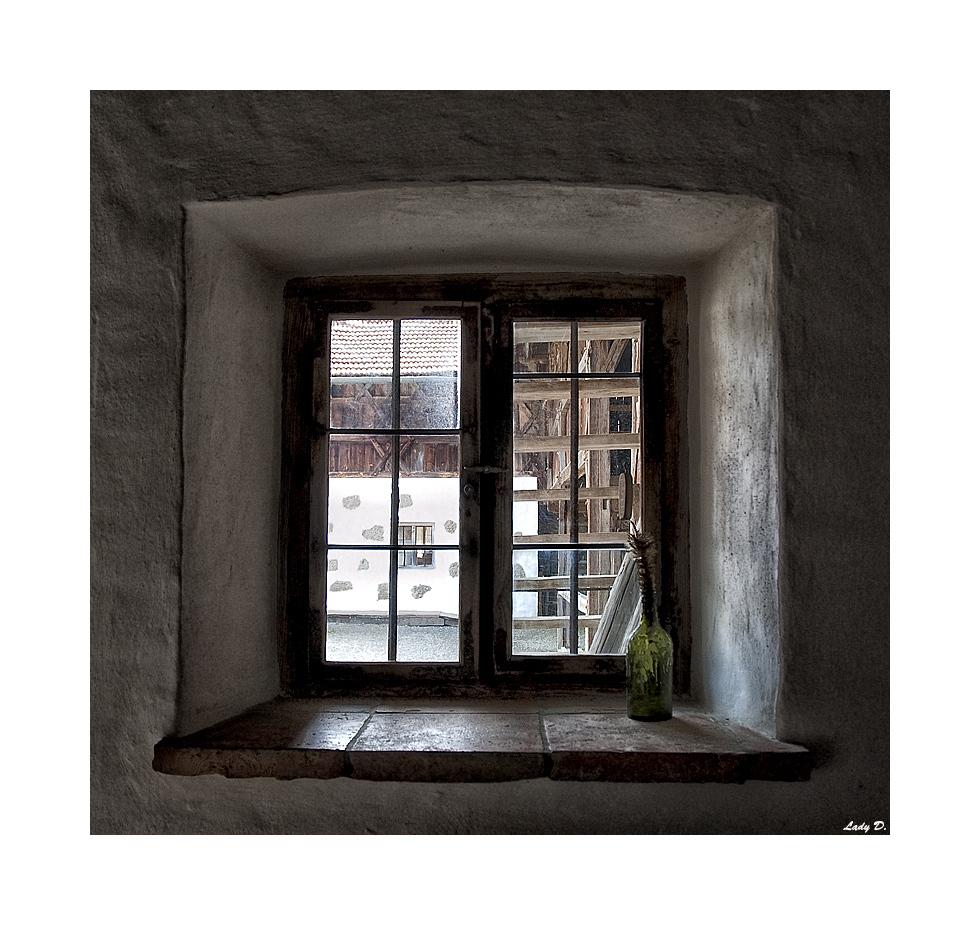 aus`m Fenster g`schaut
