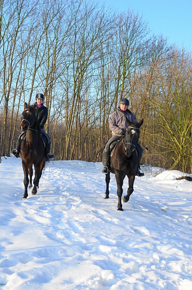 Ausreiten im Schnee
