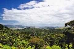 Aussicht vom Eyefull Tower über  Coromandel Town NZL