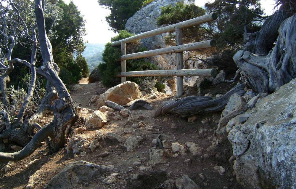 """Aussichtspunkt auf der """"Isola del Giglio"""""""