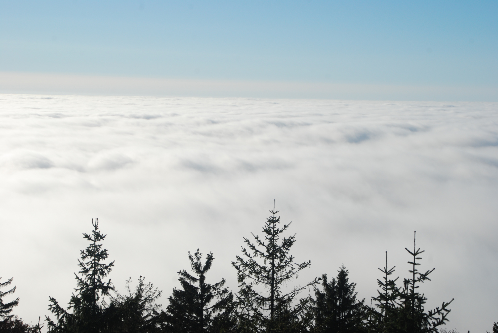 Aussichtsturm Alpenblick