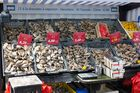 Austernverkauf