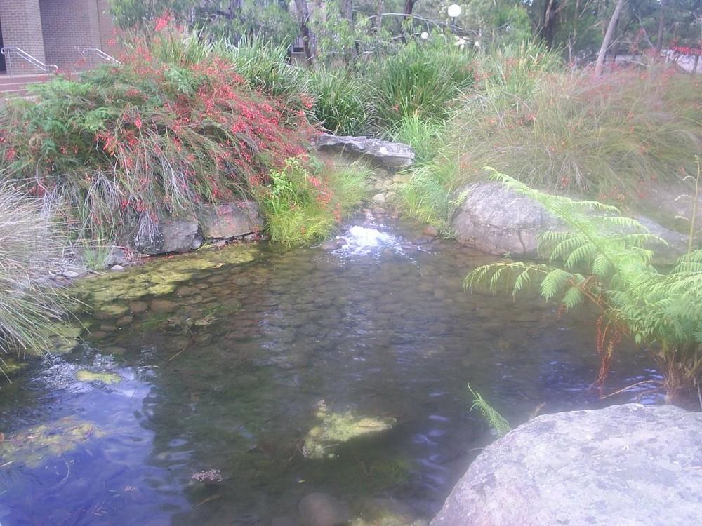 Australia, Wollongong