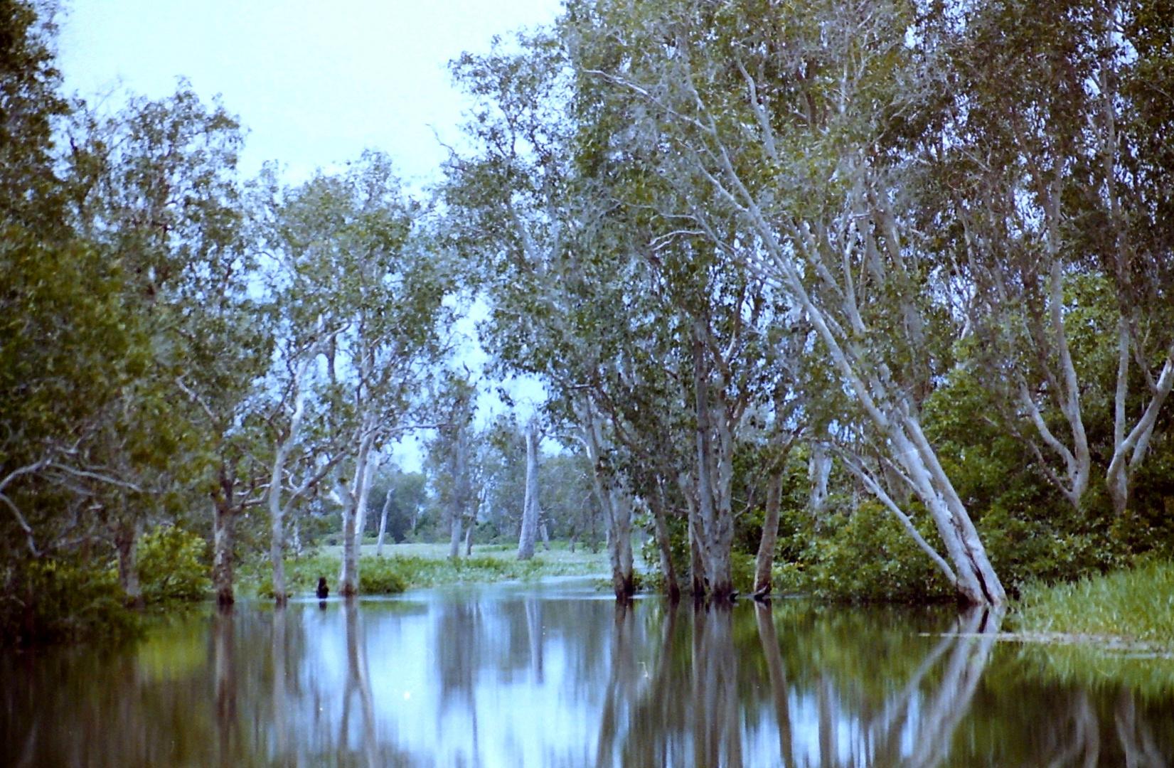 Australien 1995_008
