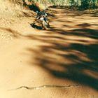 Australien (2002), Alptraum
