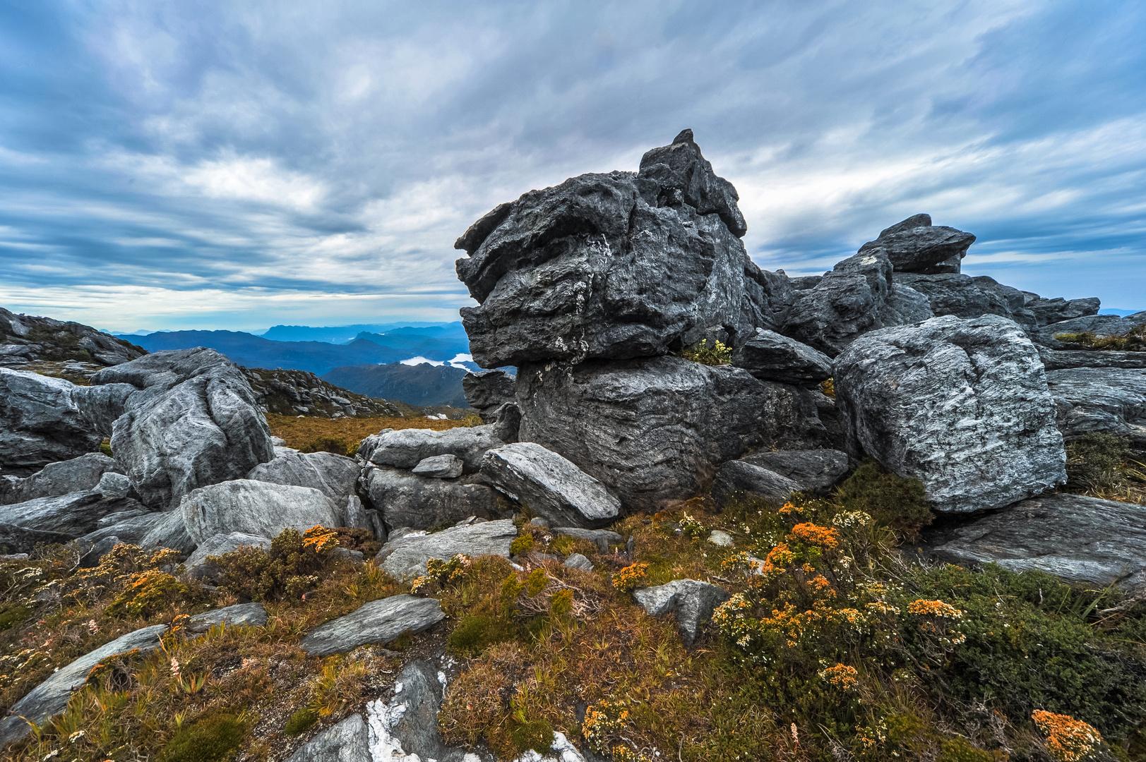 Australien, Tasmanien: Am Mount Sprent