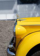 Auto gialla