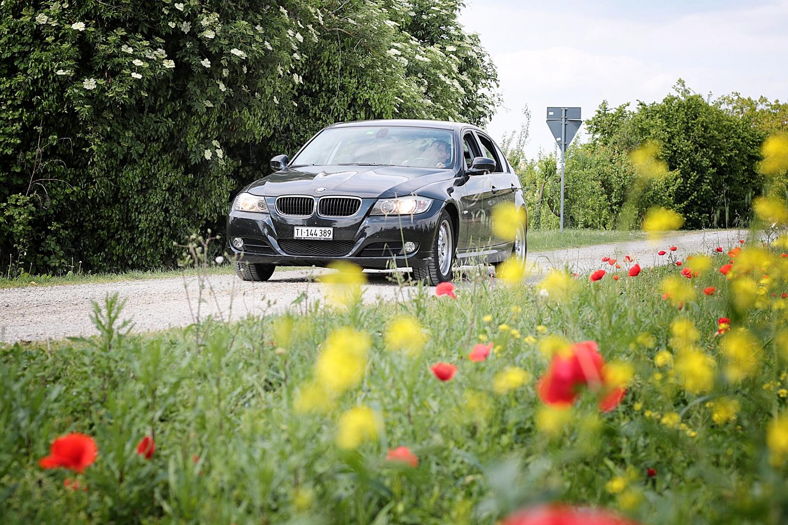 Auto in campagna