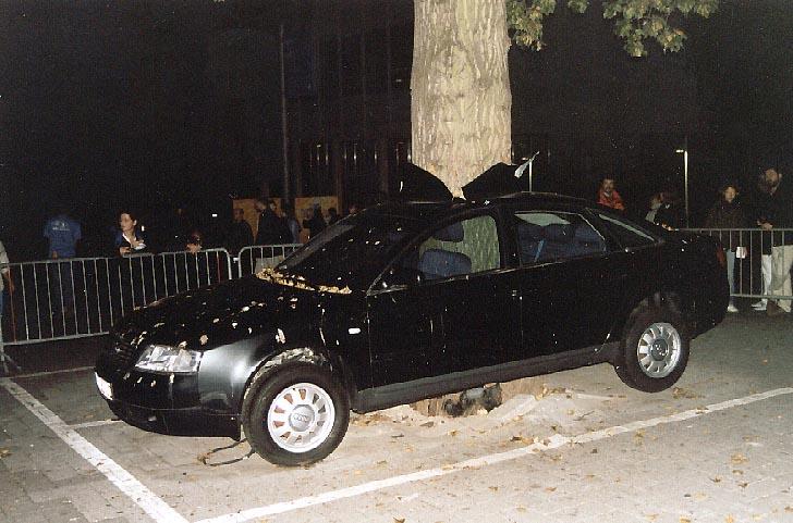 Auto um den Baum