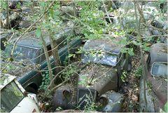 Autofriedhof 3