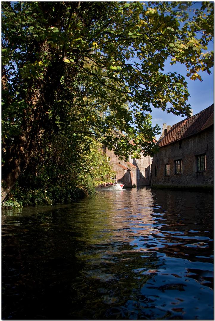 Automne à Bruges XV Des fenêtres sur le canal
