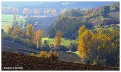 automne ariegeois