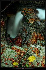•Automne en cascade•