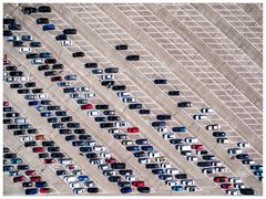 automobile monoculture