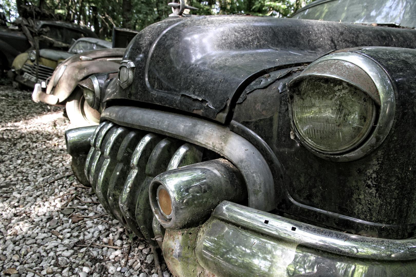 Autoskulpturenpark Neandertal - Buick III