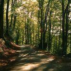 Autoweg von der Wipperaue in Solingen zu meinem Elternhaus ins Grünental Solingen-Widdert.