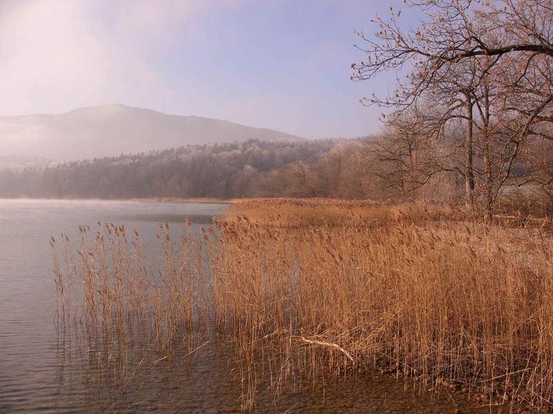 autum at teh lake Tegernsee/Germany