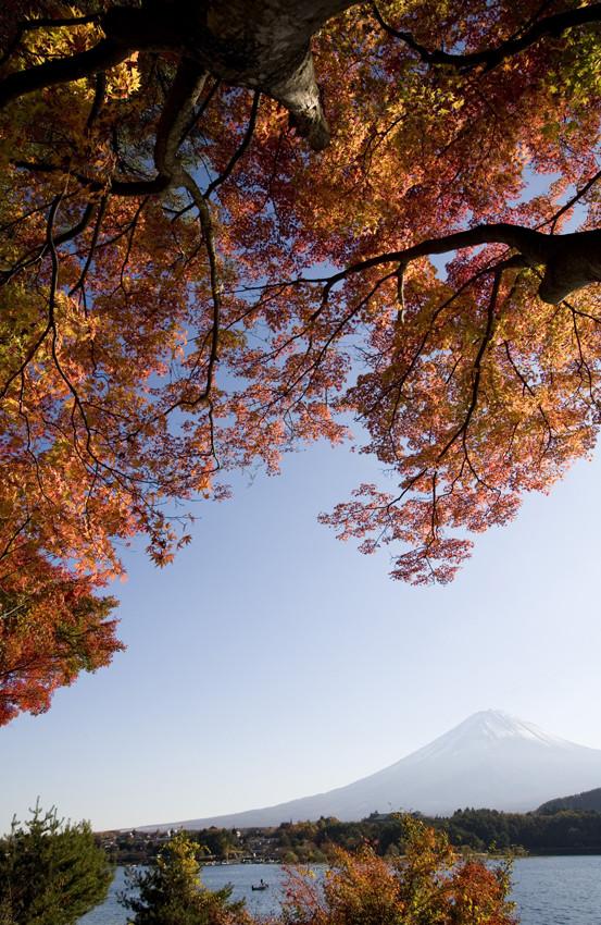 Autum in Kawaguchi_Lake