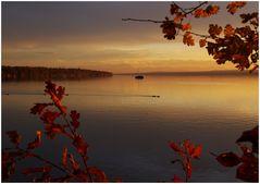 autumn................