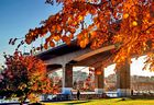 Autumn at False Creek