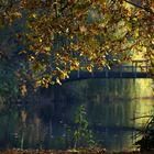 Autumn at the lake (18)