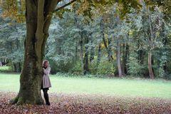 autumn ....