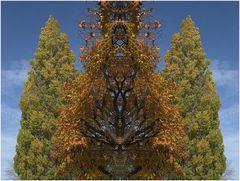 autumn cloning
