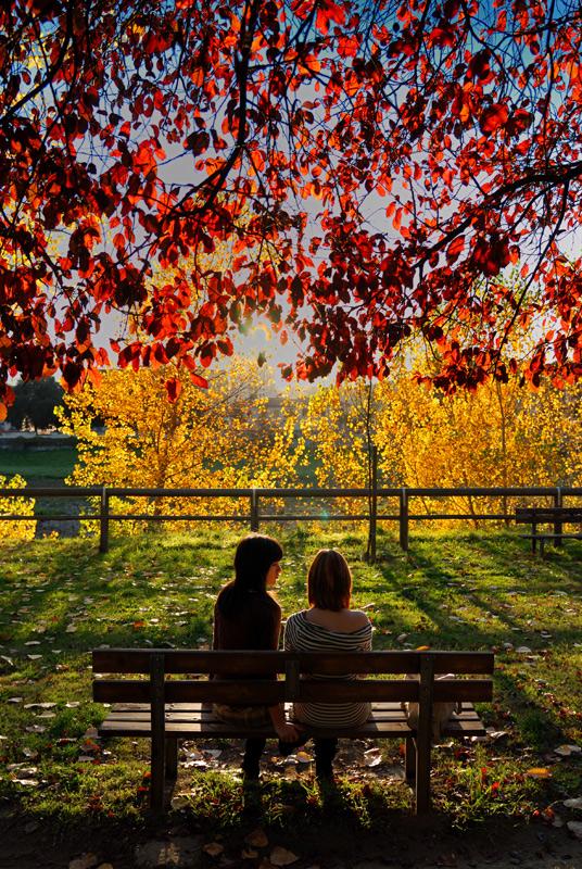 autumn = colors