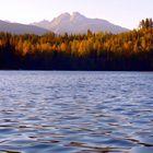 Autumn colours at Catherine Lake