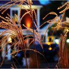 Autumn Evening, Main Street