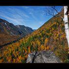 Autumn glory...