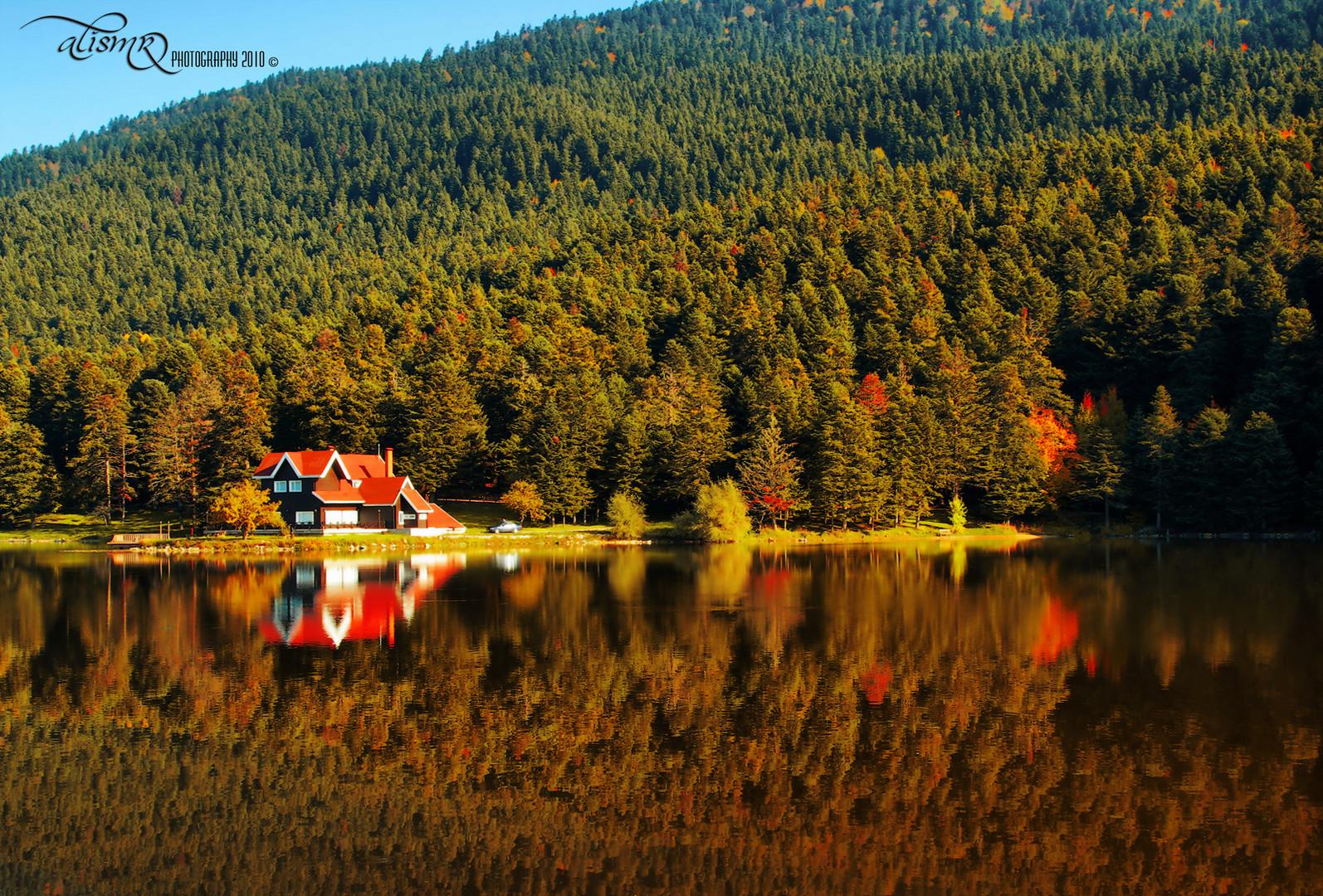 Autumn Golcuk